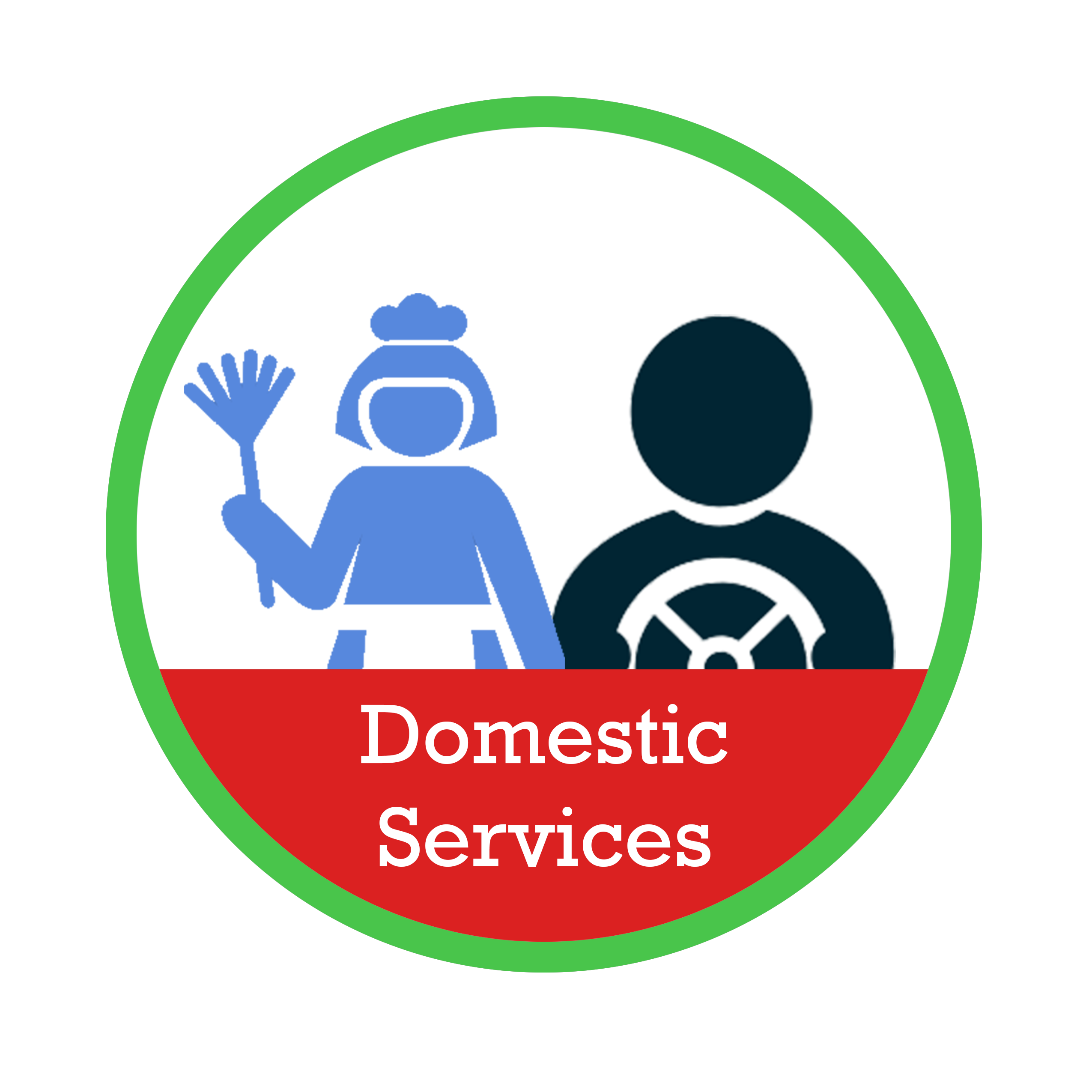 Icon - Domestic Services.png
